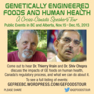 Genetically Engineered Foods and Human Health