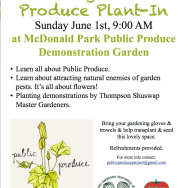 Public Produce Plant-In at MacDonald Park on Sunday, June 1st at 9:00AM
