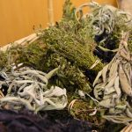 dried herbs salvaged from the farmers marketBard