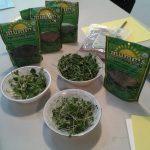 microgreens samples