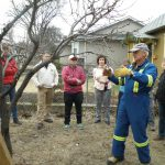 fruit-tree pruning