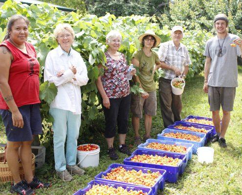 Gleaning Abundance 2017, GAP