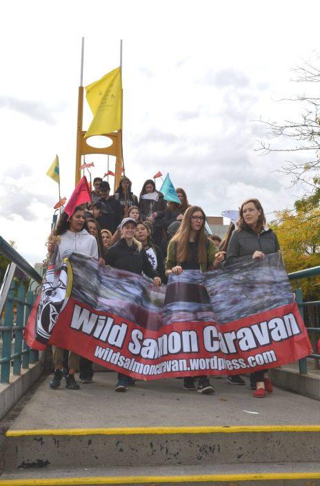 Wild Salmon Caravan 2017