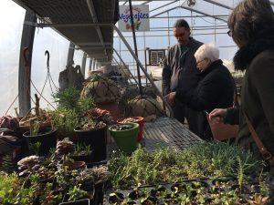 Gardengate May Plant Sale @ Gardengate