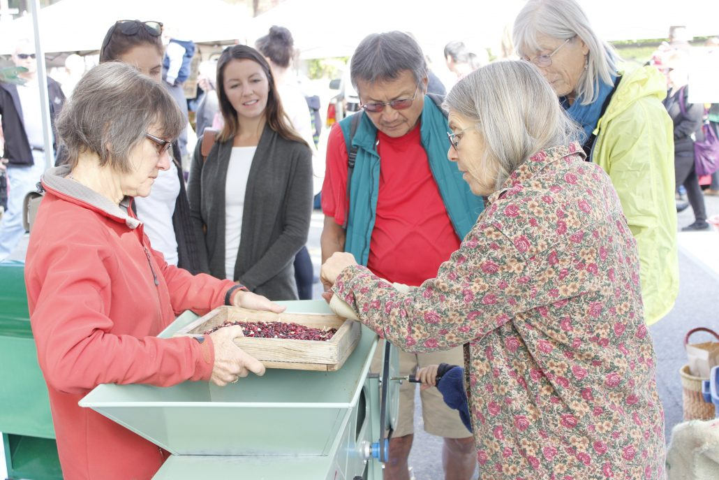 Sandra Frangiadakis, Mojave Kaplan, seed cleaning